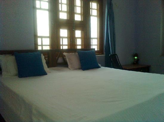 Aravali Hotel & Restaurant : room photo