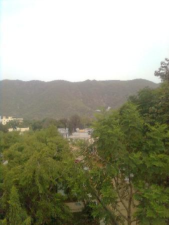 Aravali Hotel & Restaurant : view from the roof