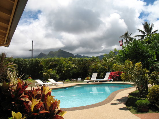 Papaya Paradise Bed and Breakfast: View of pool and mountain from lanai.