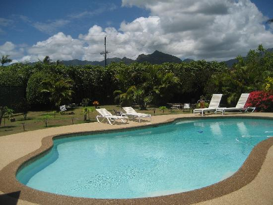 Papaya Paradise Bed and Breakfast: Another view of the pool/mtns from the lanai.