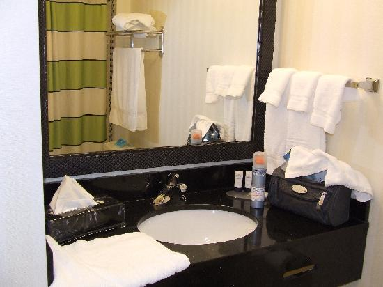 Fairfield Inn & Suites Miami Airport South: il bagno