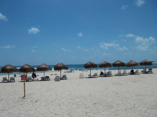 Punta Morena: new palapas