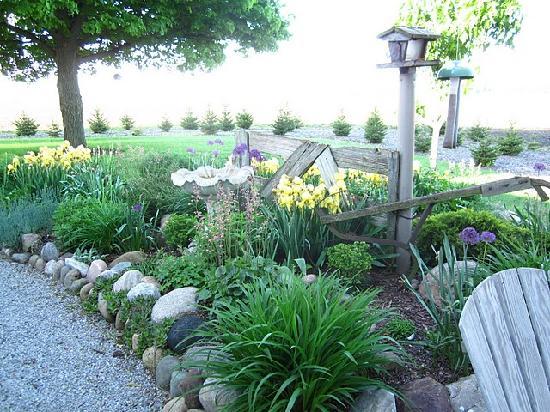 Village View B&B: More garden