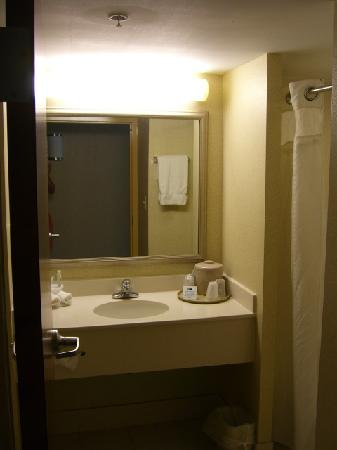 Holiday Inn Express Hotel & Suites Winchester: Bathroom