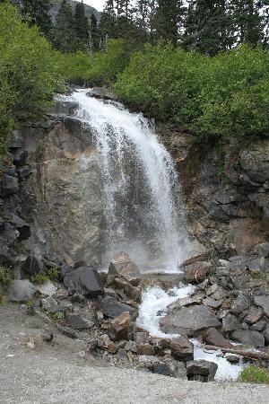 Dyea Dave Tours: bridal falls