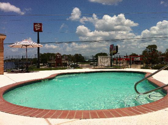 Best Western Lake Conroe Inn: Pool