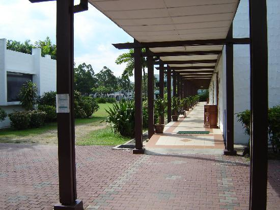 Country Heights Resort: Passage with lot of greenary