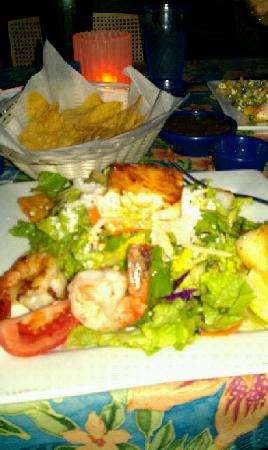 Blue Coyote Grill: Seafood Salad Yummy