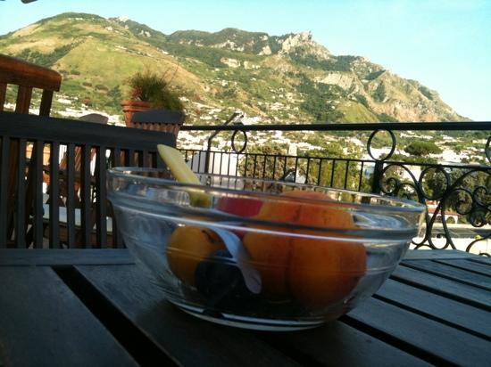 Hotel Villa Verde: frutta fresca e monte Epomeo!