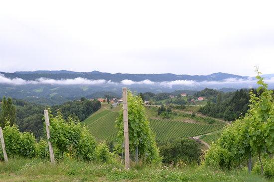"""Tourismusverband """"Die Sudsteirische Weinstrasse"""