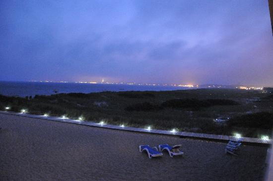 Sandbars on Cape Cod Bay: Beach at night