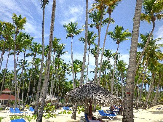 Grand Bahia Principe La Romana: plage