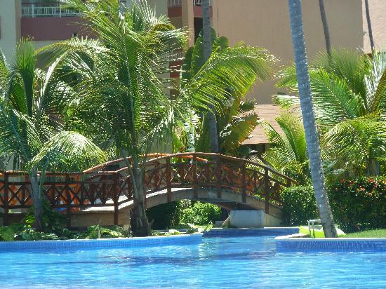 Majestic Elegance Punta Cana : A view of the pool