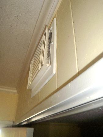 Sea Cabins and Oceanside Villas: mold above the bunk beds