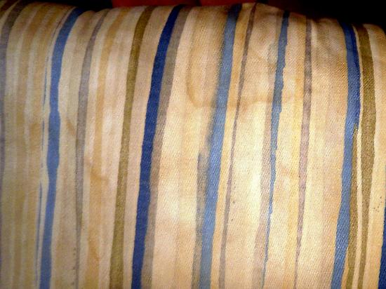 Sea Cabins and Oceanside Villas: stinky dirty couch stains (they said it was just the color...)