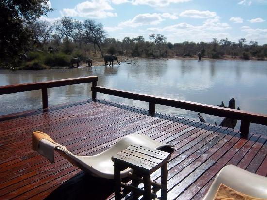 Klaserie Private Game Reserve, Sudáfrica: Nice place to relax - Deck overviewing watershed