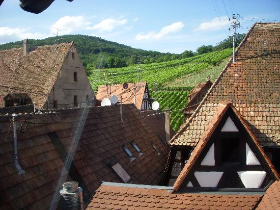 B. Espace Suites: View from back windows across roof to vineyards