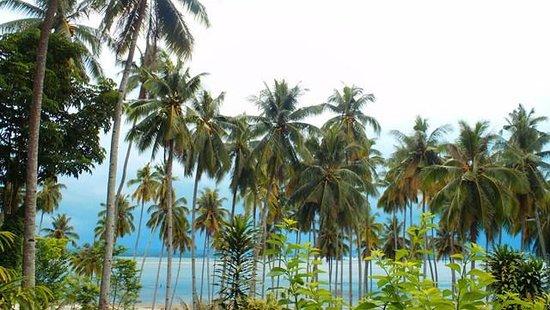 Samal Island, الفلبين: samal island 1