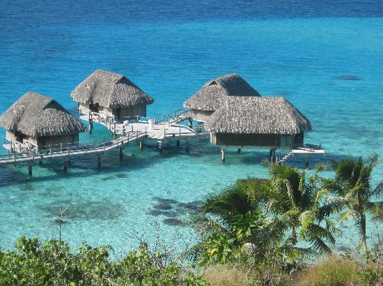Sofitel Bora Bora Marara Beach Resort : La vue depuis le haut du motu
