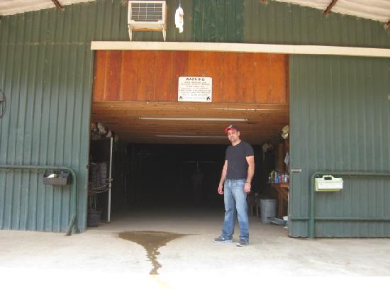 Bar-J Ranch: The stable