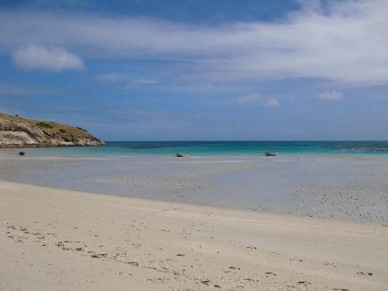 Lizard Island Resort: Spiaggia fianco Lizard