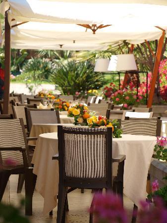 Acacia Resort Parco dei Leoni : Ristorante all'esterno