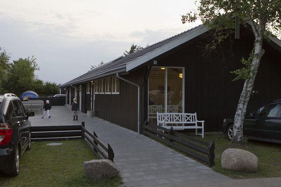 Grenen Camping