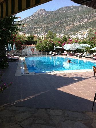 Meldi Hotel: pool
