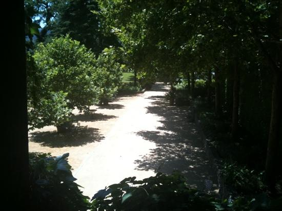 St. Supery Winery: walkway leading up to the winery aseen from tasting room