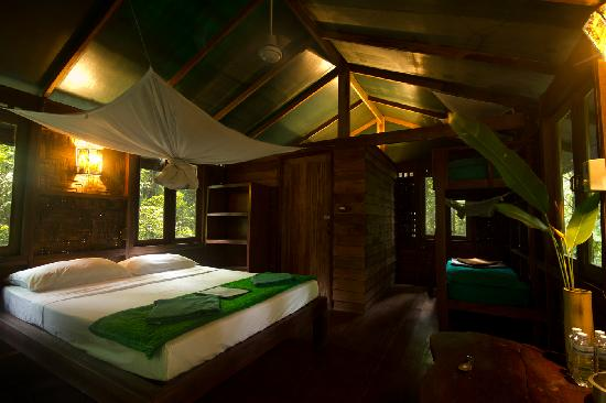 Khao Sok National Park, Thailand: Forest tree house