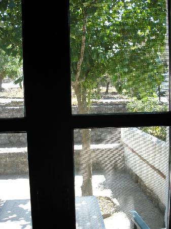 Hotel El Horcajo: Vistas desde la habitación.