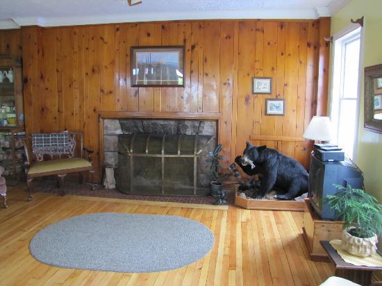 Thunder Bay Inn : Fireplace in lobby