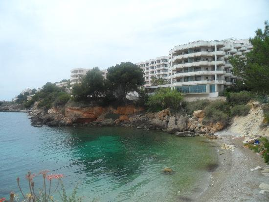 Hotel jardin del mar picture of trh jardin del mar for Jardin del mar