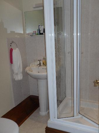 Chapel Croft Guest House: Compact but spotless bathroom