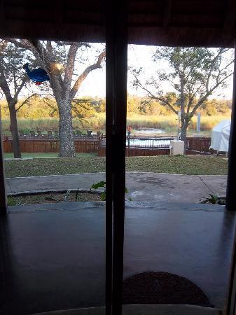 Sabie River Bush Lodge: View from our Roundavel