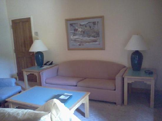 Rock Creek Resort: mauve couch, outdated lamps