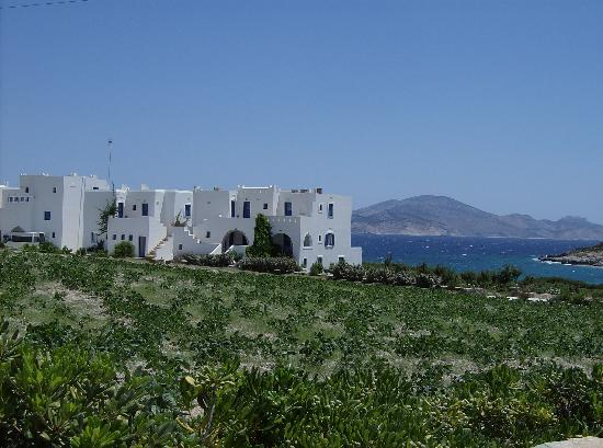 Schinoussa, Grecia: The hotel