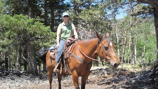 Granite Mountain Outfitters: Great trail ride!