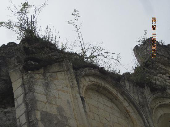 Domaine de la Maison Neuve: A ruin nearby.