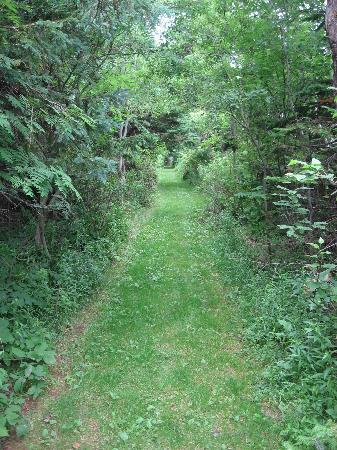 Summerside, Canada: trail to beach