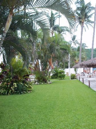 Costa Alegre Hotel and Suites: vista de los jardines