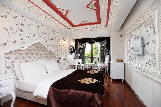 Deluxe Golden Horn Sultanahmet Hotel : standart room