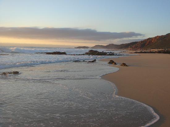 Injidup Spa Retreat : Injinup beach