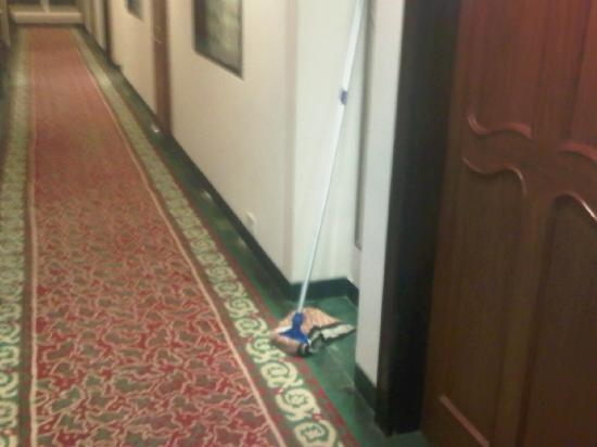 Welcomhotel Vadodara: this mop was there in gallery before i went for bfast and was still there on return