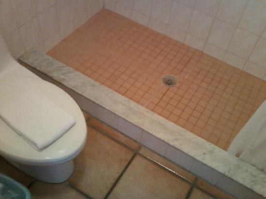 Odd Tiled Shower Well Cleaned Though Picture Of Big