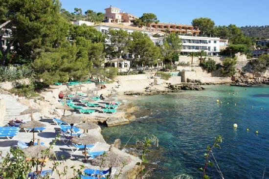 Hotels In Peguera Mallorca