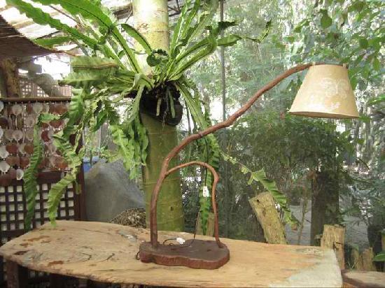 Casa Rap : lampshade