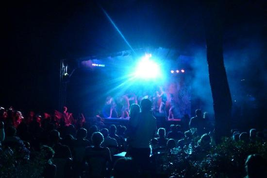 Cieloverde Camping Village: Spettacoli serali 2