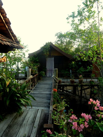 Awi's Yellow House : cabanes