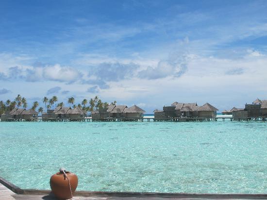 Gili Lankanfushi: Precioso